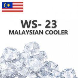 Ароматизатор Малазийский Кулер WS-23 5мл