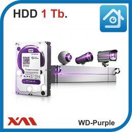 HDD 1 Tb Purple. Western Digital WD10PURZ. Жесткий диск 3.5.