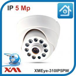 XMEye-310IP5PW-2,8.