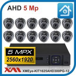 Комплект видеонаблюдения на 12 камер XMEye-KIT1625AHD300PG-12.