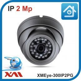 XMEye-300IP2PG-2,8.(Пластик/Серая). 1080P. 2Mpx. Камера видеонаблюдения IP.