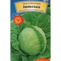 Капуста Іюньська (1г) (Номер партії: 1324)