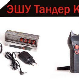 ЭШУ Тандер К.222 с Акб и зарядн. устройством (Россия)