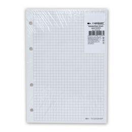 Сменный блок inФОРМАТ для тетради на кольцах А5 50 листов, белый, цвет линовки: серый, 4 отверстия