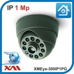 XMEye-310IP1PG-2,8.