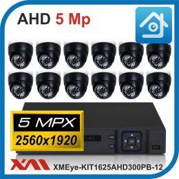 Комплект видеонаблюдения на 12 камер XMEye-KIT1625AHD300PB-12.