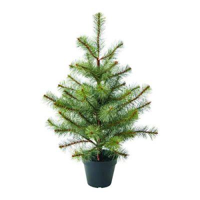 ФЕЙКА Искусственное растение в горшке, д/дома/улицы рождественская елка