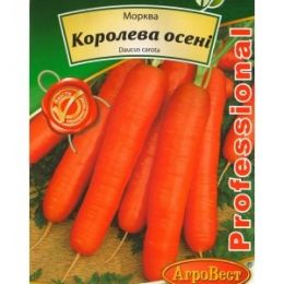 Морква Королева Осені (5г) (Номер партії: 9166)