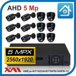 Комплект видеонаблюдения на 12 камер XMEye-KIT1625AHD750PB/300PB-12.