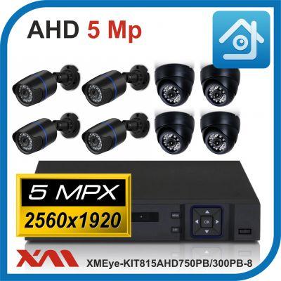 Комплект видеонаблюдения на 8 камер XMEye-KIT815AHD750PB/300PB-8.