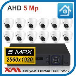 Комплект видеонаблюдения на 12 камер XMEye-KIT1625AHD300PW-12.