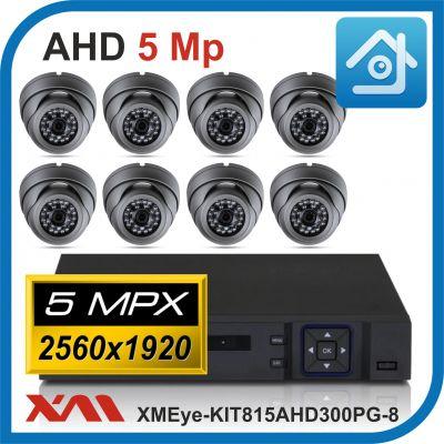Комплект видеонаблюдения на 8 камер XMEye-KIT815AHD300PG-8.